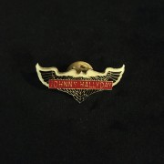 Johnny Hallyday - Pins original ailé