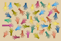 Associations fédérations ONGs